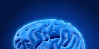 Indian-Brain